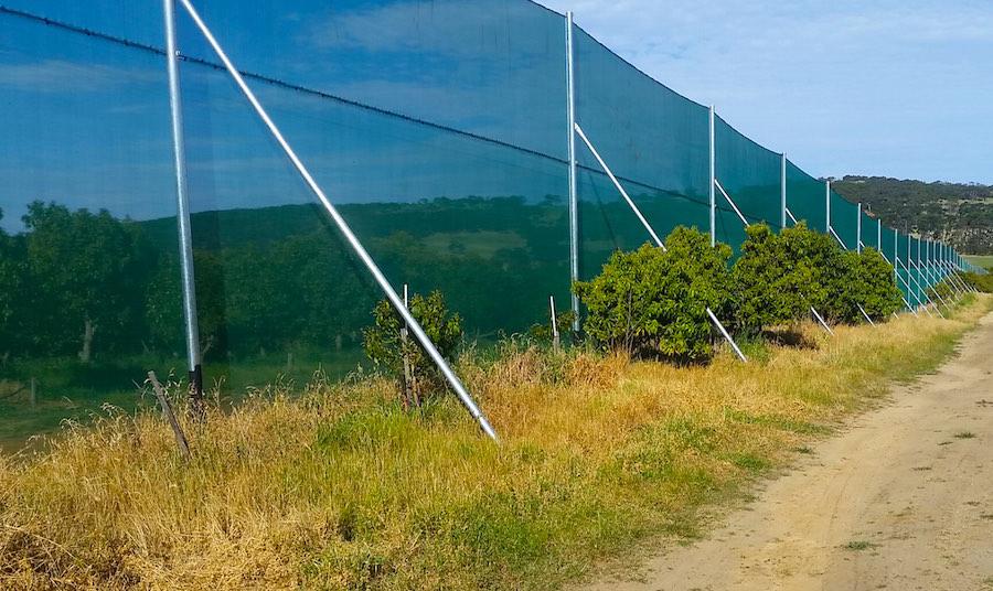 nti wind netting application