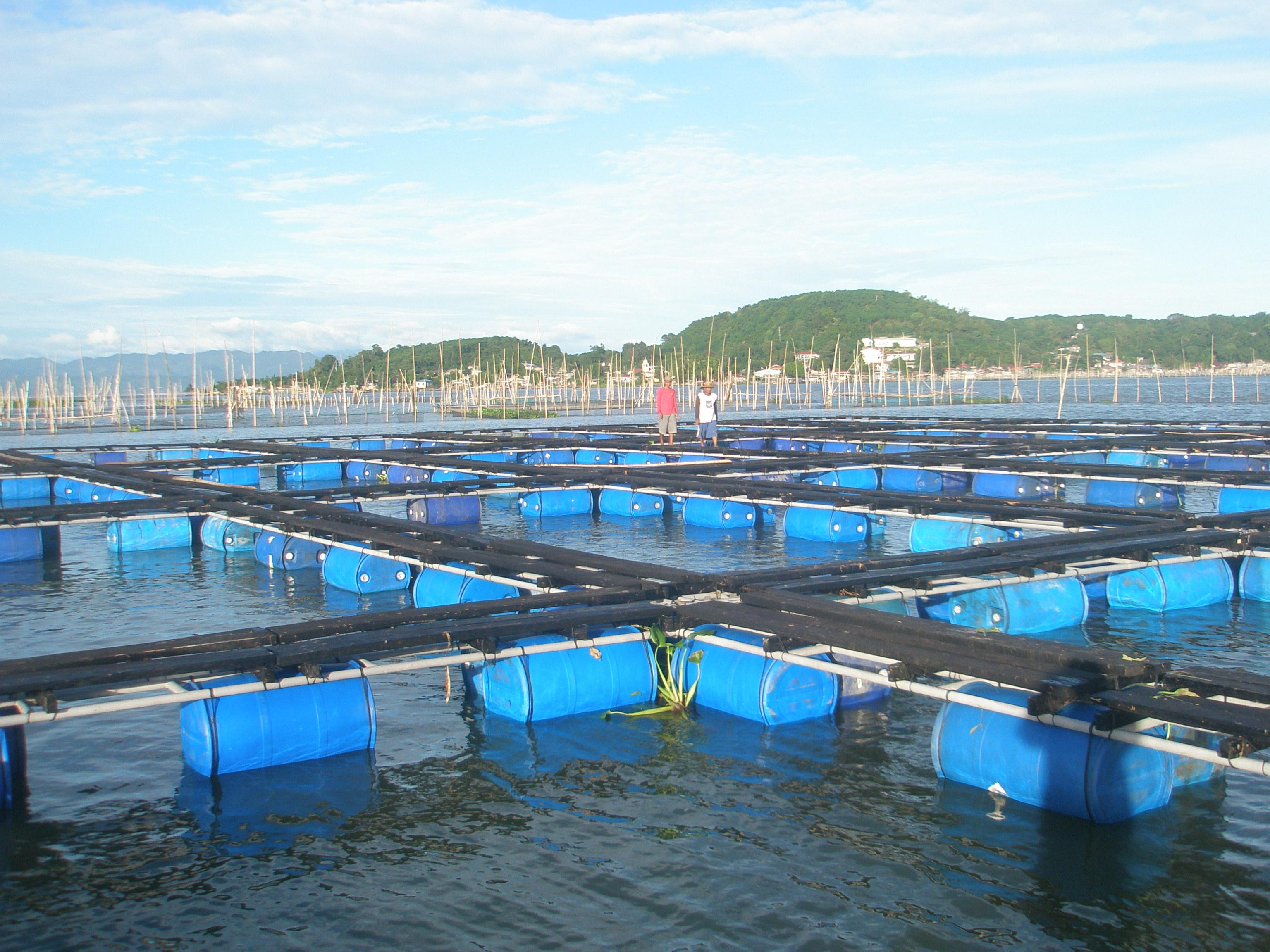 Aqua Netting, Fishery Cage Nets, Aquaculture netting